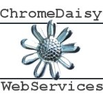 Chrome Daisy Web Services Binfield